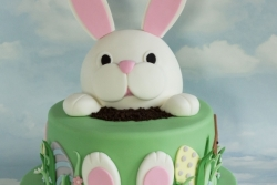 Easter Bunny Cake Front