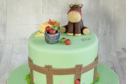 Pony 40th Cake