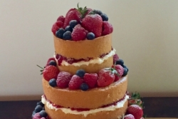 Naked cake Chaucer Barn